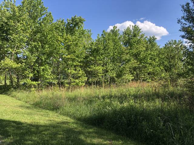4420 Viola Rd., Mc Minnville, TN 37110 (MLS #RTC2251674) :: The Kelton Group