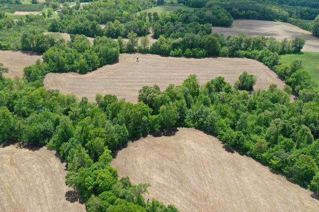0 Briarpatch Lake Road, Paris, TN 38242 (MLS #RTC2251845) :: HALO Realty