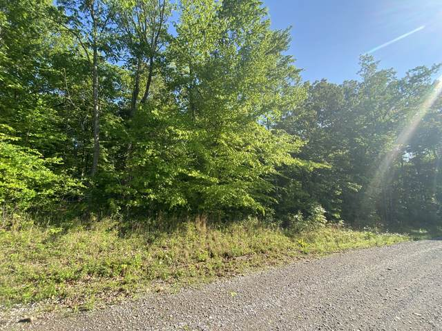 3 Hilltop Road (Tract 3), Cumberland Furnace, TN 37051 (MLS #RTC2252240) :: The Helton Real Estate Group