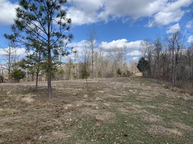 1 New Era Bluff Rd, Linden, TN 37096 (MLS #RTC2252853) :: The Adams Group