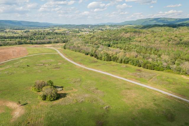 172 River Dr, Dunlap, TN 37327 (MLS #RTC2253417) :: Nashville on the Move