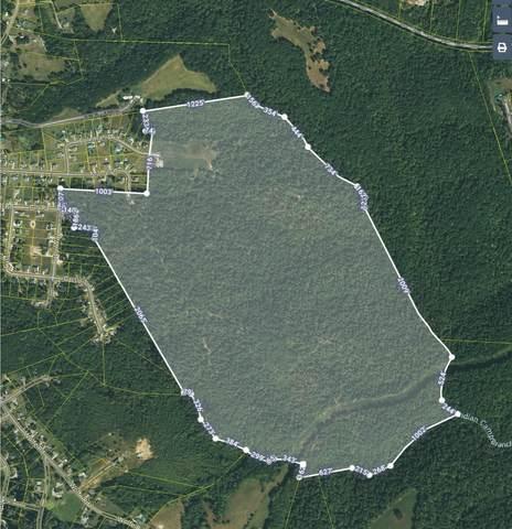 0 E O White Bluff Rd E, White Bluff, TN 37187 (MLS #RTC2254161) :: Team George Weeks Real Estate