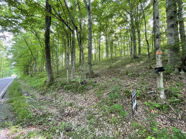 1284 Rogues Fork Rd, Bethpage, TN 37022 (MLS #RTC2254206) :: The Godfrey Group, LLC