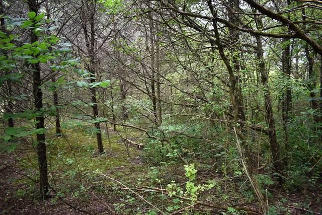 0 Dixon Springs Hwy, Riddleton, TN 37151 (MLS #RTC2255354) :: Village Real Estate