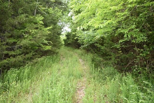 0 Dixon Springs Hwy, Riddleton, TN 37151 (MLS #RTC2255363) :: Village Real Estate