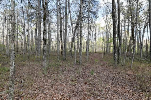 0 Monteagle Falls Rd, Monteagle, TN 37356 (MLS #RTC2257685) :: Oak Street Group