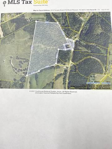 2210 Terrapin Branch Rd, Mount Pleasant, TN 38474 (MLS #RTC2257814) :: Nelle Anderson & Associates