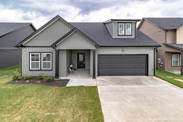 2902 Teakwood Dr, Clarksville, TN 37040 (MLS #RTC2258028) :: Candice M. Van Bibber | RE/MAX Fine Homes