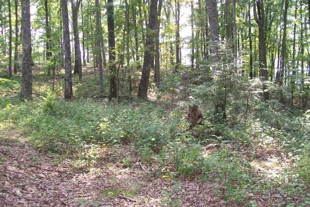 0 Bluff Line Dr, Mc Minnville, TN 37110 (MLS #RTC2258500) :: Village Real Estate