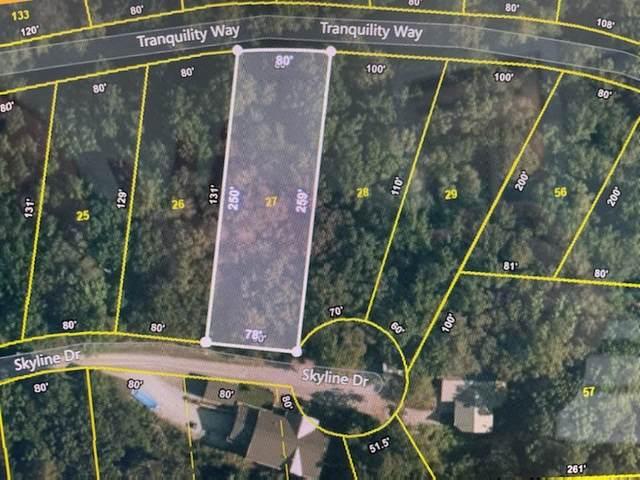 0 Skyline Dr, Smithville, TN 37166 (MLS #RTC2258533) :: John Jones Real Estate LLC
