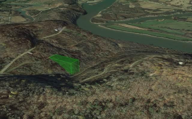 0 Eagle Nest Ct, Gainesboro, TN 38562 (MLS #RTC2260097) :: Village Real Estate