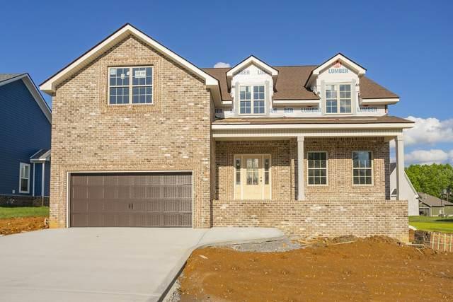 851 Jersey Dr, Clarksville, TN 37043 (MLS #RTC2260381) :: Candice M. Van Bibber | RE/MAX Fine Homes