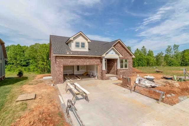 117 Cottage Ln, Clarksville, TN 37043 (MLS #RTC2260462) :: The DANIEL Team | Reliant Realty ERA
