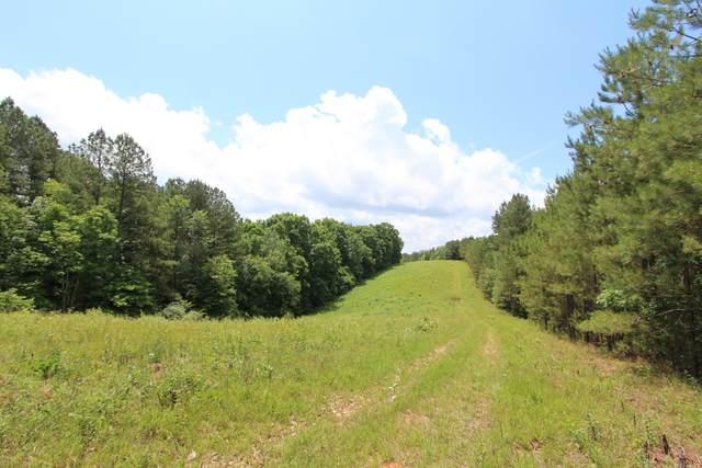 0 Firetower Road, Hohenwald, TN 38462 (MLS #RTC2261256) :: Village Real Estate