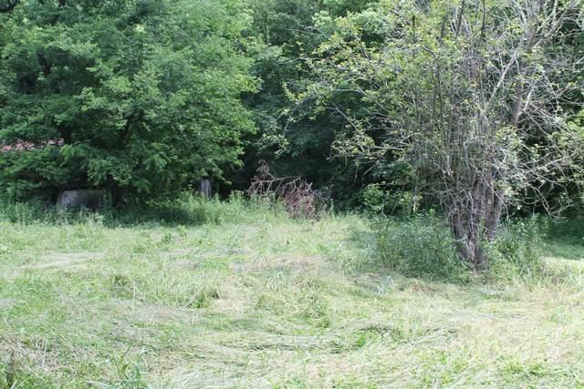 0 Keeling Branch Hwy, Whitleyville, TN 38588 (MLS #RTC2261571) :: Village Real Estate