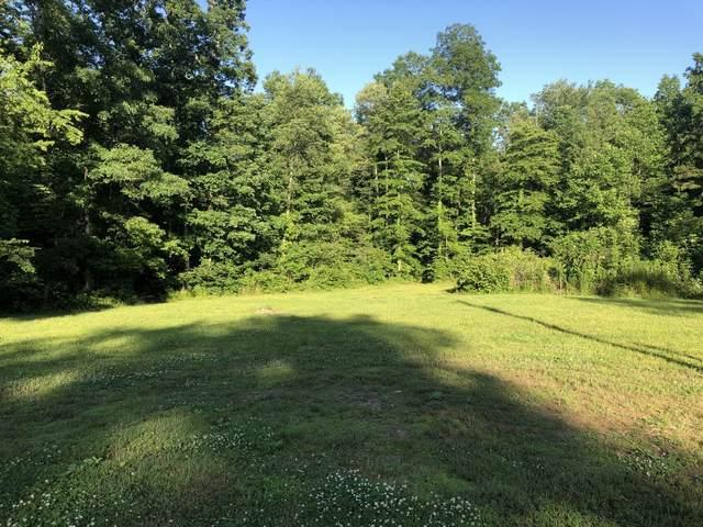 111 Topsy Rd, Hohenwald, TN 38462 (MLS #RTC2261716) :: John Jones Real Estate LLC