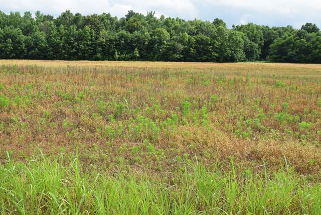 6 Ramsey Road, Morrison, TN 37357 (MLS #RTC2261775) :: Village Real Estate