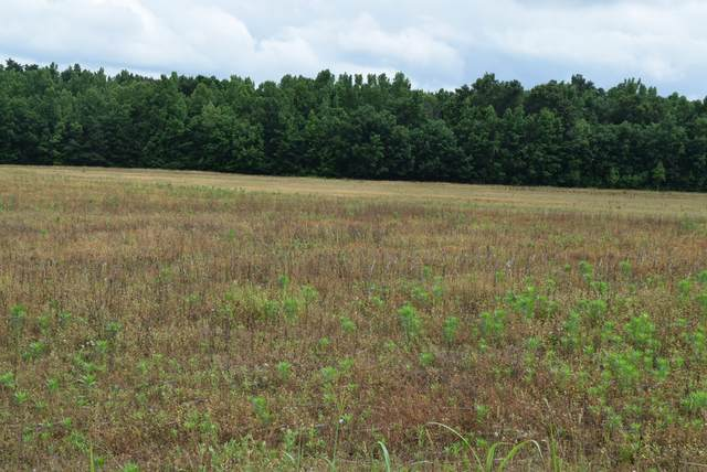 7 Ramsey Road, Morrison, TN 37357 (MLS #RTC2261776) :: Maples Realty and Auction Co.