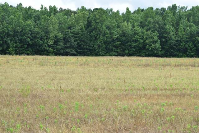8 Ramsey Road, Morrison, TN 37357 (MLS #RTC2261777) :: Village Real Estate
