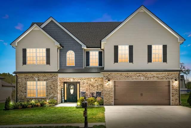 357 Winter Terrace Ln, Clarksville, TN 37040 (MLS #RTC2261843) :: The Helton Real Estate Group