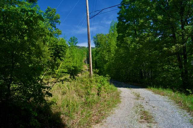 914 Pitts Gap Rd, Pikeville, TN 37367 (MLS #RTC2261880) :: Village Real Estate