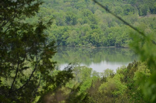 0 Hopkins Hollow Rd, Gainesboro, TN 38562 (MLS #RTC2262213) :: Village Real Estate