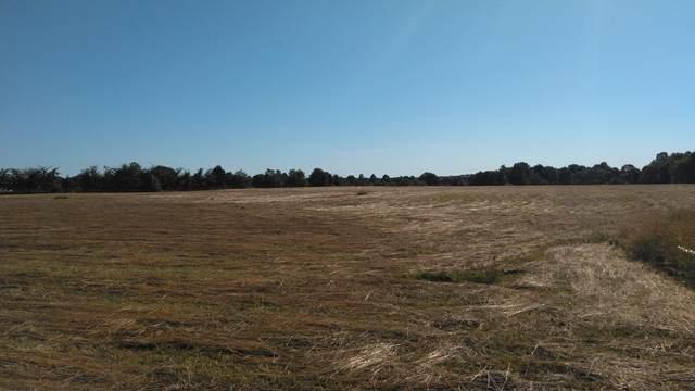 1 Rocky Mound Rd, Westmoreland, TN 37186 (MLS #RTC2262780) :: The Godfrey Group, LLC