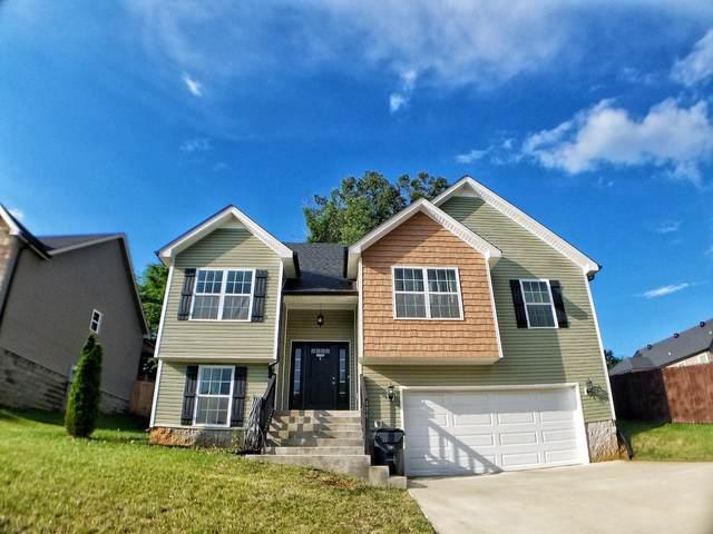434 Leslie Wood Dr, Clarksville, TN 37040 (MLS #RTC2262876) :: Village Real Estate