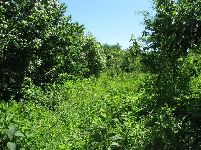 1477 Dry Creek Rd, Waverly, TN 37185 (MLS #RTC2262957) :: Village Real Estate
