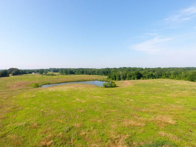 907 Moore Hollow Rd, Indian Mound, TN 37079 (MLS #RTC2263443) :: Village Real Estate