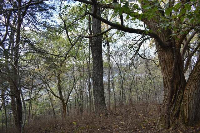 0 Holleman Bend Ln, Granville, TN 38564 (MLS #RTC2263450) :: The Godfrey Group, LLC