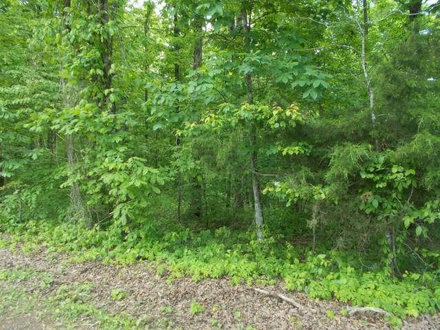 0 Old Sams Creek Rd, Pegram, TN 37143 (MLS #RTC2263477) :: Village Real Estate