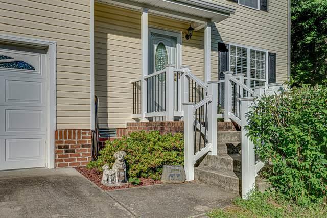 202 Polar Ct, White Bluff, TN 37187 (MLS #RTC2263643) :: Village Real Estate
