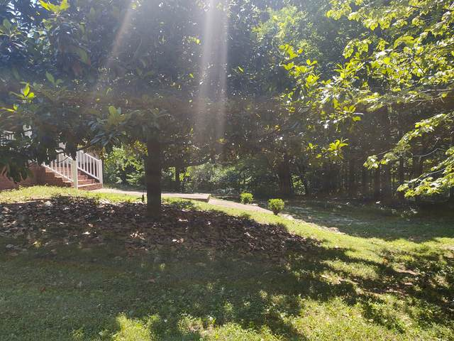4330 Sowell Hollow Rd, Columbia, TN 38401 (MLS #RTC2263861) :: Village Real Estate