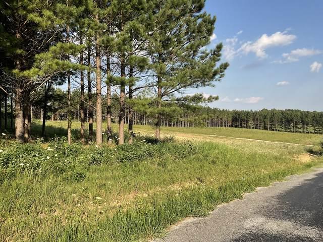 77 Cumberland Dr, Summertown, TN 38483 (MLS #RTC2264084) :: Village Real Estate