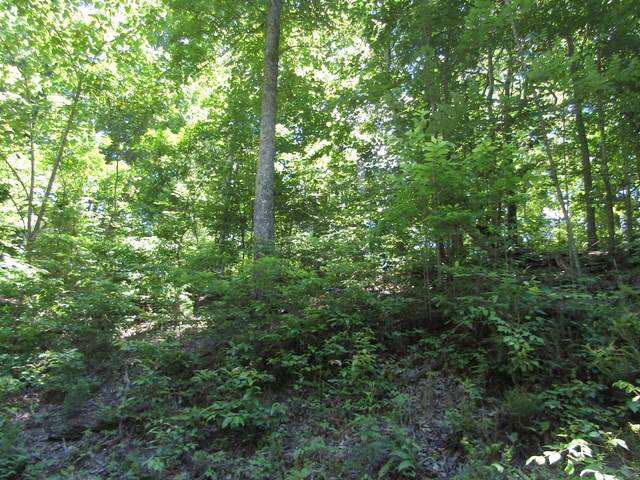 5 Simple Life Road, Hilham, TN 38568 (MLS #RTC2264333) :: HALO Realty