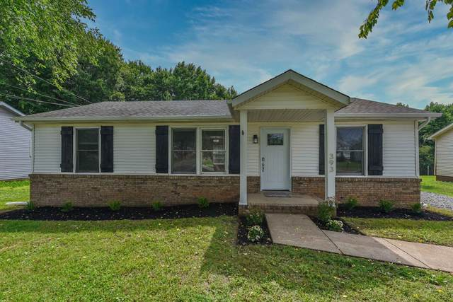 393 Donna Dr, Clarksville, TN 37042 (MLS #RTC2264396) :: Your Perfect Property Team powered by Clarksville.com Realty