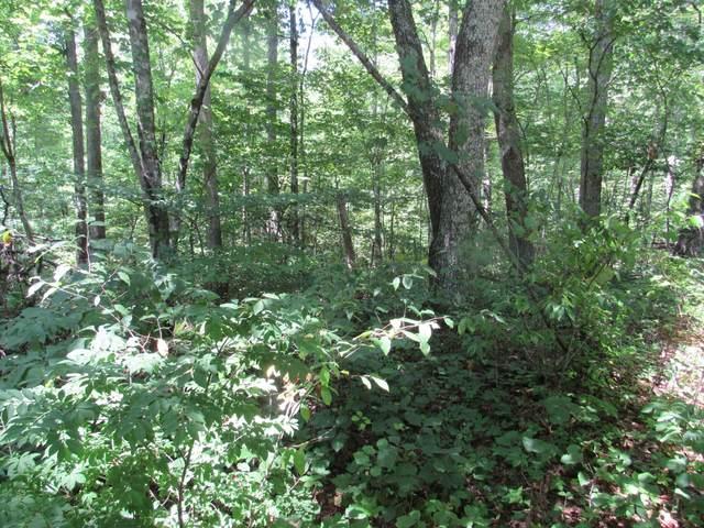 0 Buck Hollow Rd, Chapmansboro, TN 37035 (MLS #RTC2265275) :: DeSelms Real Estate