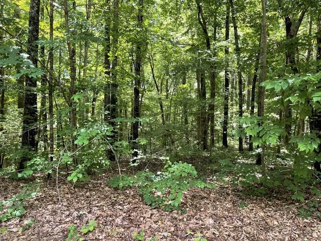 0 Collinwood Dr, Mc Minnville, TN 37110 (MLS #RTC2265662) :: Village Real Estate