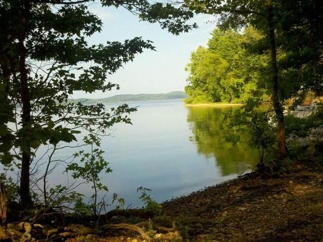 17 Satter White Landing, Dover, TN 37058 (MLS #RTC2266071) :: Hannah Price Team