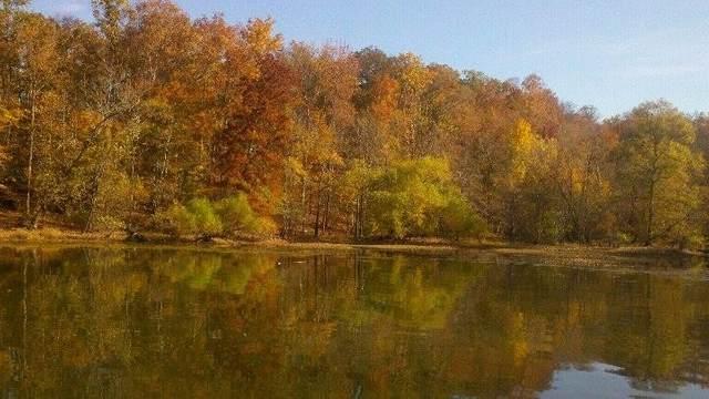 16 Satter White Landing, Dover, TN 37058 (MLS #RTC2266073) :: Hannah Price Team