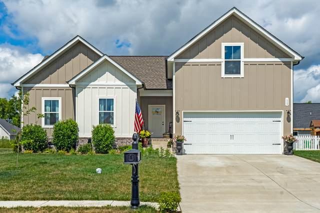 339 Brandywine Ln, Springfield, TN 37172 (MLS #RTC2267538) :: Oak Street Group