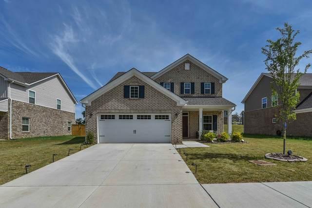 820 Twin Falls Dr, Joelton, TN 37080 (MLS #RTC2267931) :: Village Real Estate