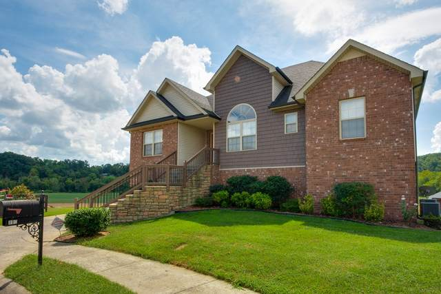 800 Colin Ct, Clarksville, TN 37043 (MLS #RTC2268706) :: Oak Street Group
