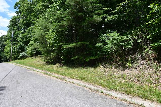 0 Bear Ct Lot 19, Monteagle, TN 37356 (MLS #RTC2268949) :: Christian Black Team