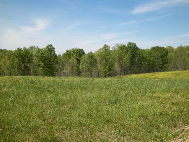 13 Rose Hill Rd, Red Boiling Springs, TN 37150 (MLS #RTC2272823) :: RE/MAX Fine Homes