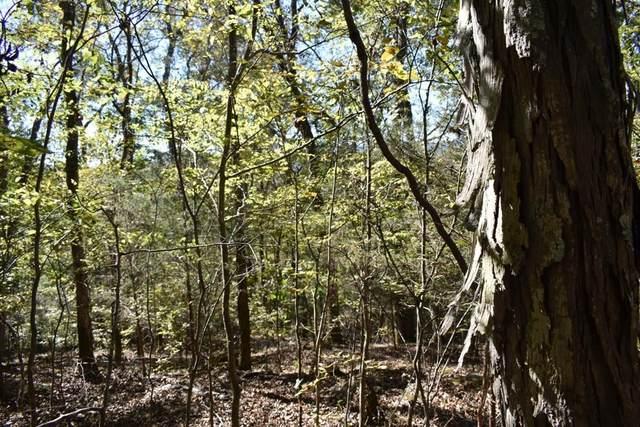 0 Bear Wallow Gap Ln, Carthage, TN 37030 (MLS #RTC2273866) :: FYKES Realty Group