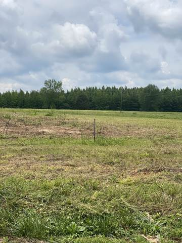 935 Wilkie St, Mc Ewen, TN 37101 (MLS #RTC2274438) :: DeSelms Real Estate
