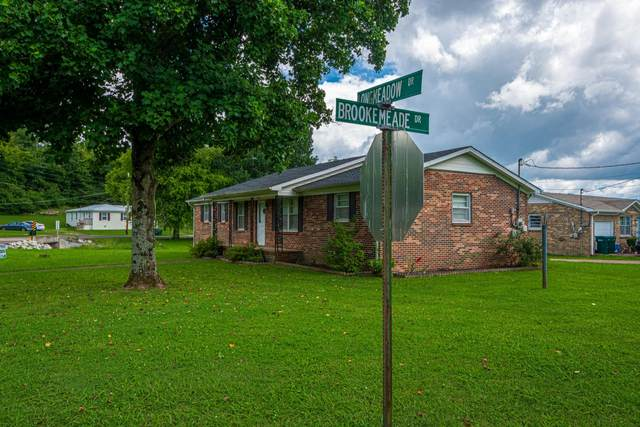 335 Longmeadow Cir, Pulaski, TN 38478 (MLS #RTC2274487) :: Christian Black Team