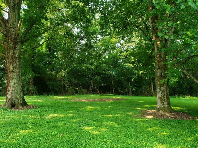 4049 Hampshire Pike, Hampshire, TN 38461 (MLS #RTC2274967) :: Nashville on the Move